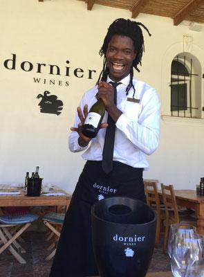 Dornier Weingut in Stellenbosch