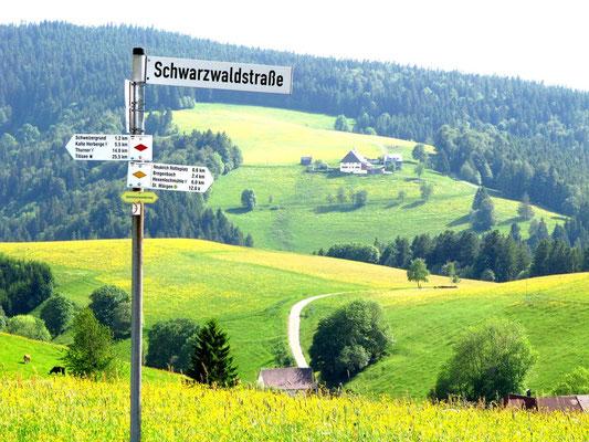 Treffendes Straßenschild, typisches Landschaftsbild und Streckenwegweiser auf dem Westweg.