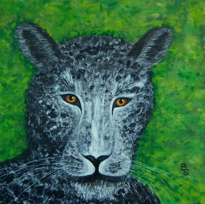 Leopard, 40*40, 2014