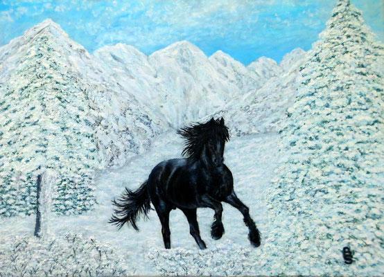 Black horse in winter, 70*50, 2011