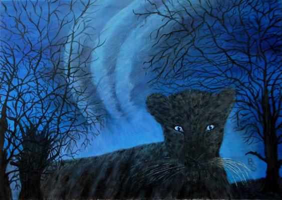 Black panther, 70*50, 2016
