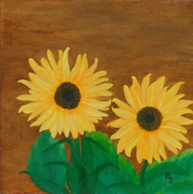 Sonnenblumen, 50*50, 2014