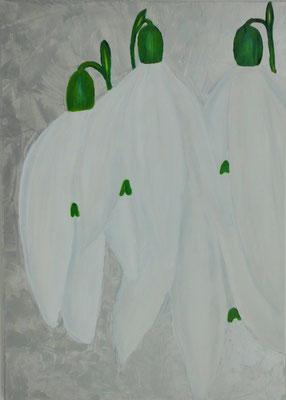 Schneeglöckchen, 50*70, 2013