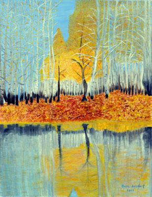 Landschaft im Spiegel, 60*75, 2011