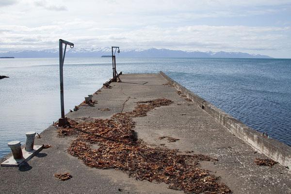 4.8. Tjörnes Halbinsel - ehemaliger Fischerhafen Tungulending