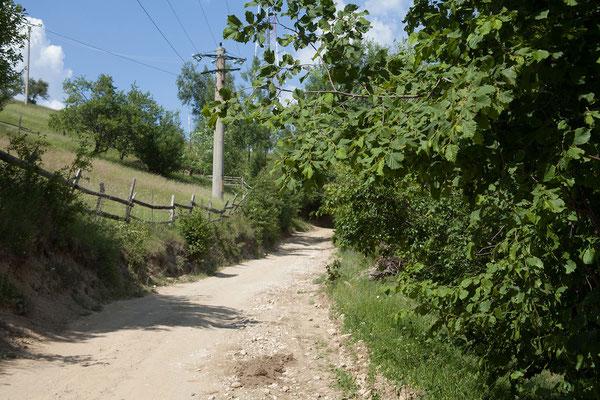 09.06. Wir fahren in das kleine Bergdorf Măgura im Nationalpark Piatra Craiului.