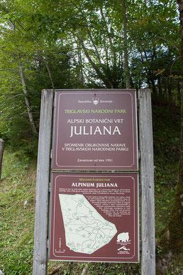 Alpinum Juliana