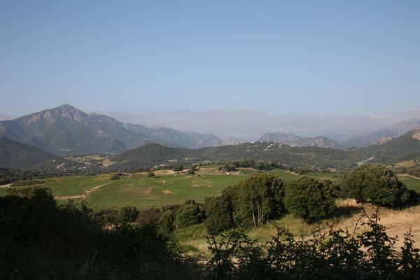 31.5. Vom etwas außerhalb der Stadt gelegenen Camping Les Mimosas fahren wir heute erst einmal in die Inselhauptstadt Ajaccio.