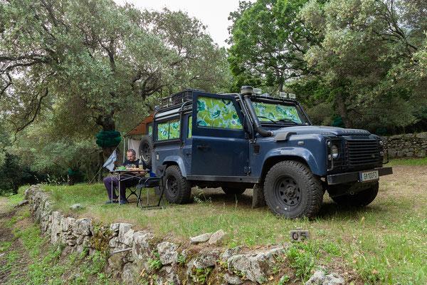 31.05. Wir übernachten am Camping U Pignottu in Avapessa; ein wunderbar ruhiger Platz in einem Olivenhain.