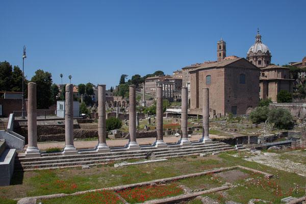 21.05. Forum Romanum