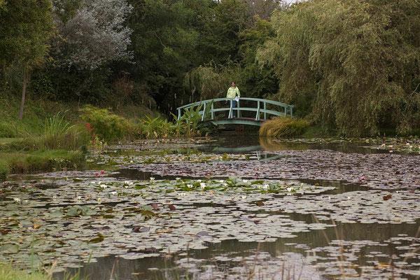 13.09. Bennett's Water Gardens