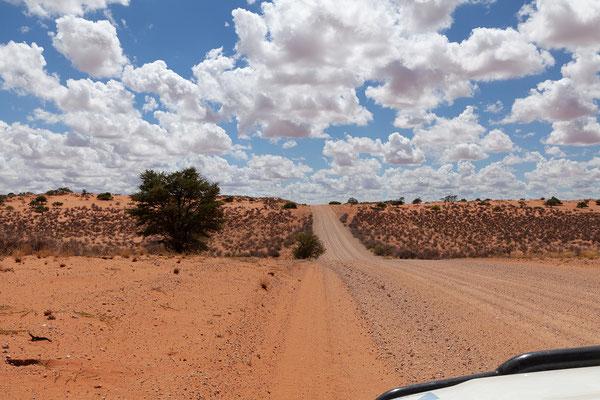 14.02. Die Strecke durch die Kalahari Dünen ist wuderschön.