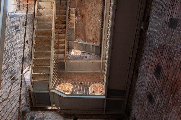 07.06. Lucca: wir besteigen den Torre Guinigi (230 Stufen)