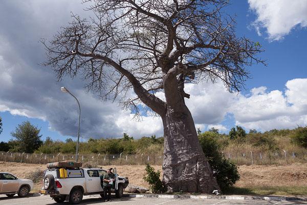 ... ist gleichzeitig der Grenzübergang zwischen Namibia und Botswana.