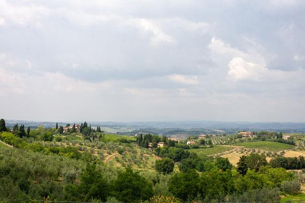 8.6. Von San Gimignano fahren wir zum Weingut Villa Francesca.