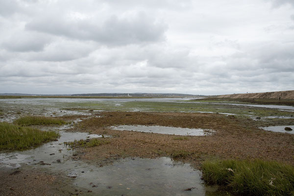 15.09. Keyhaven Marshes