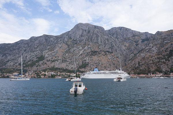 8.9. Vor Kotor liegen meist mehrere Kreuzfahrtschiffe im Hafen.