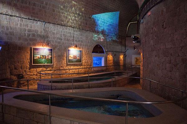21.09. Dubrovnik - Wir sehen uns das im Fort Sv. Ivan untergebrachte Aquarium an.