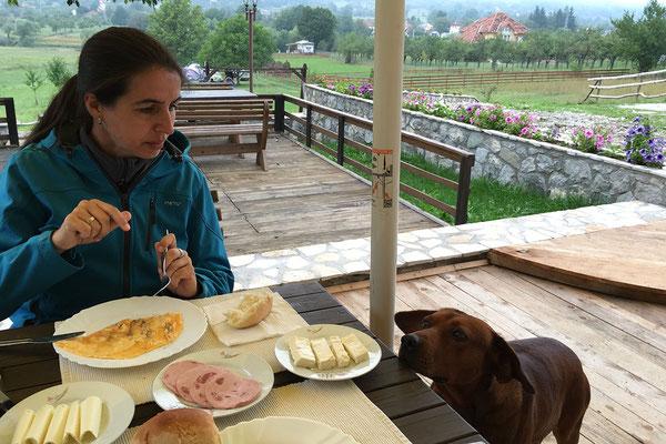 14.9. Plav, tolles Frühstück am Camping Lake Views