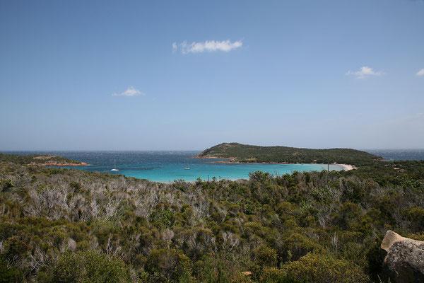 29.5. Blick auf die hufeisenförmige Rondinara Bucht