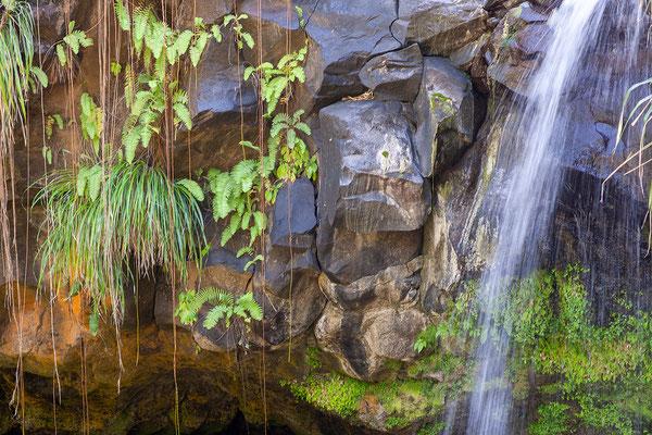 Annadale Falls