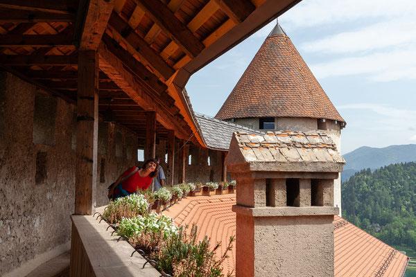 06.05. Burg Bled