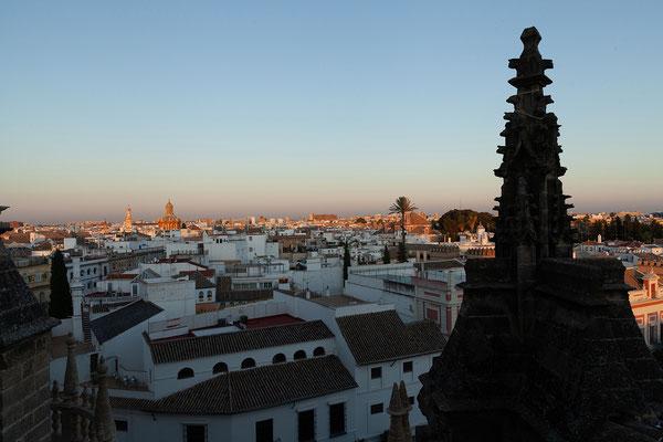 Kathedrale: Führung über die Dächer