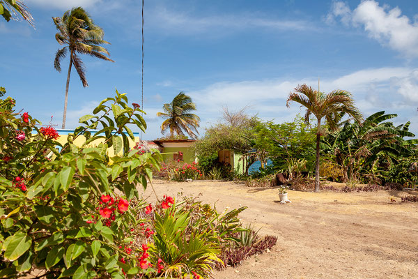 Cabier Ocean Lodge, Garten