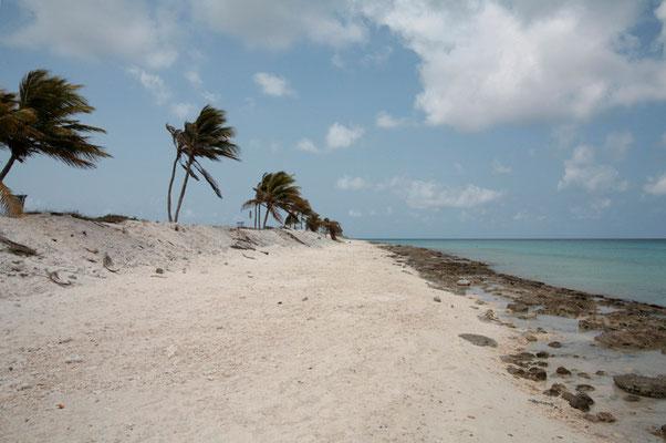 Paradise Beach ist der bekannteste Strand der Südküste