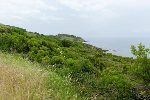 28.05. Cap Corse