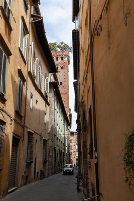 07.06. Lucca: Torre Guinigi von unten