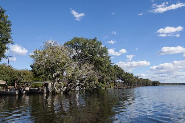 Der Chobe NP wurde 1967 als erster NP des Landes kurz nach dessen Unabhängigkeit gegründet und nach dem Fluss Chobe benannt.