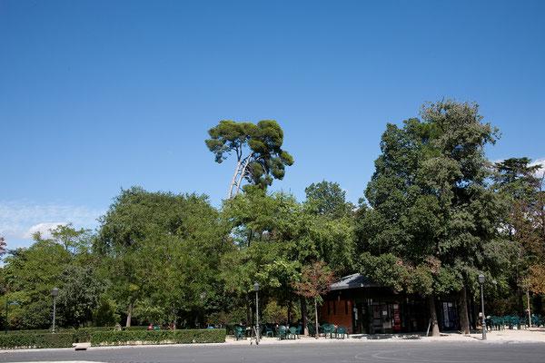 24.09. Retiro Park