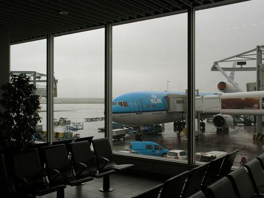 Amsterdam Airport - leider geht jeder Urlaub irgendwann zu Ende