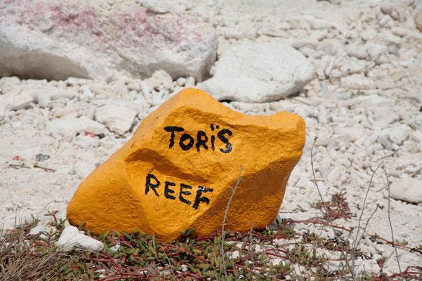 Gelbe Steine markieren die Tauchplätze: hier einer unserer Favoriten, genannt Tori's Reef