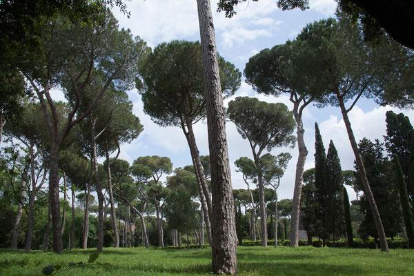 19.05. Park Villa Borghese