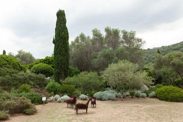30.05. Wir besuchen den botanischen Garten Parc de Saleccia