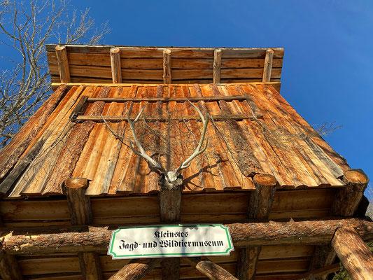 Das kleinste Wildtiermuseum ist wegen Corona geschlossen.