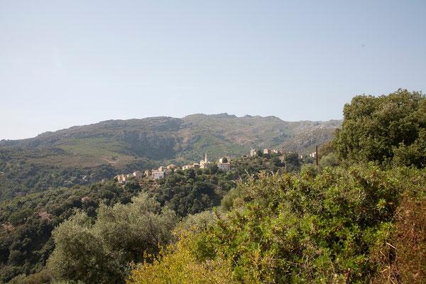02.09. D8, zwischen St. Florent und Ponte Leccia