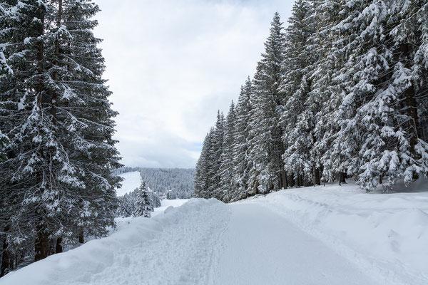 ... am Winterwanderweg ist es angemehm mit nur wenigen Wanderern.