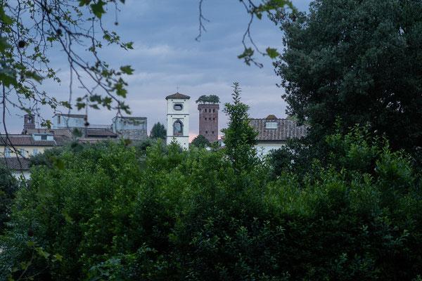 07.06. Lucca: Abendspaziergang auf der Stadtmauer mit Blick auf den Torre Guinigi