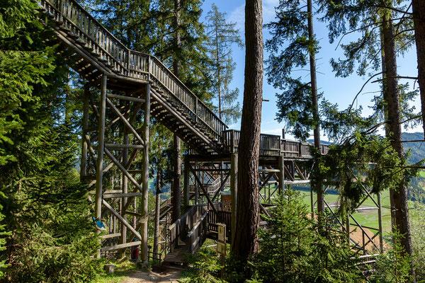 Über eine Holztreppe verlassen wir den schönen Wipfelwanderweg. Den Waldweg entlang gehen wir wieder zurück zum Ausgangspunkt der Wanderung.