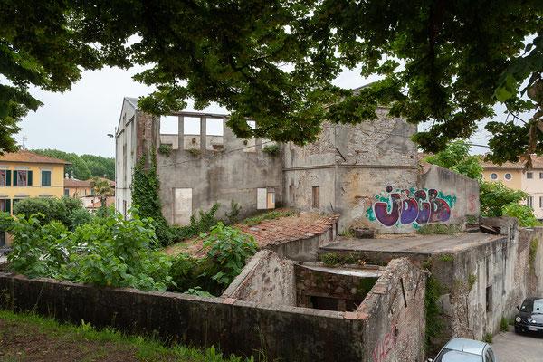 07.06. Lucca: auf der Stadtmauer