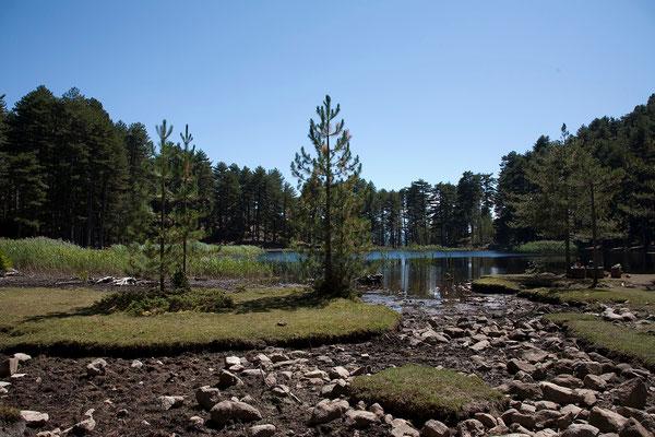 06.09. Lac de Creno (1310 m)