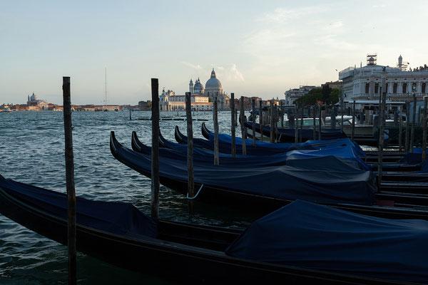 01.07. Zur blauen Stunde spazieren wir über die Piazza San Marco.