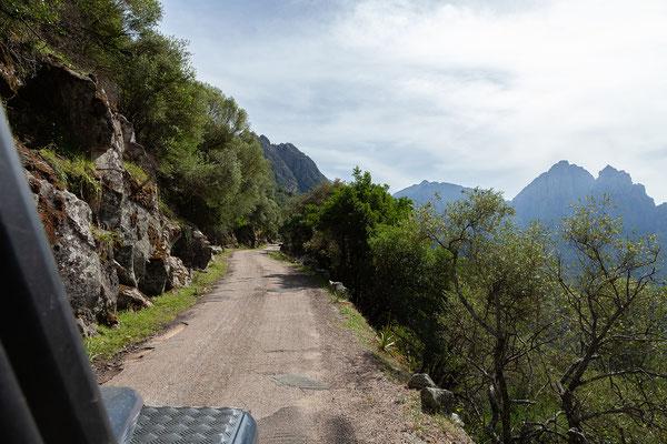 02.06. Nach dem schönen Spaziergang fahren wir weiter nach Evisa.