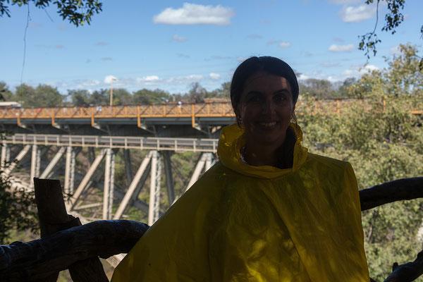 Vic Falls NP, Brücke über den Zambesi