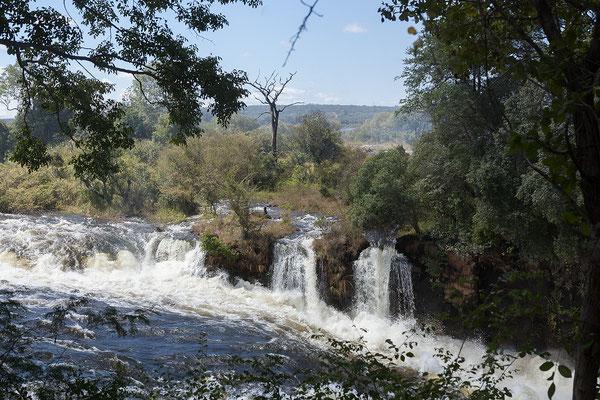 Vic Falls NP
