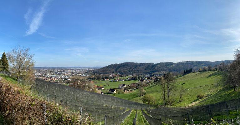 09.04. Buchkogel