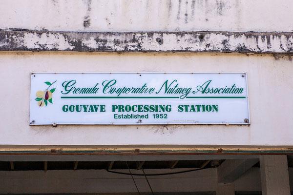 Grenada ist v.a. auch für die Produktion von Muskatnüssen bekannt